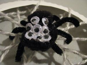Spider Craft Close-Up