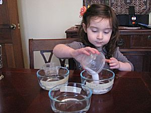 Presidents' Day Science: Coin Cleaning Experiment