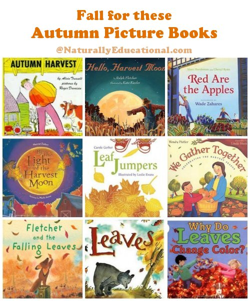 Kids Picture Books for Fall