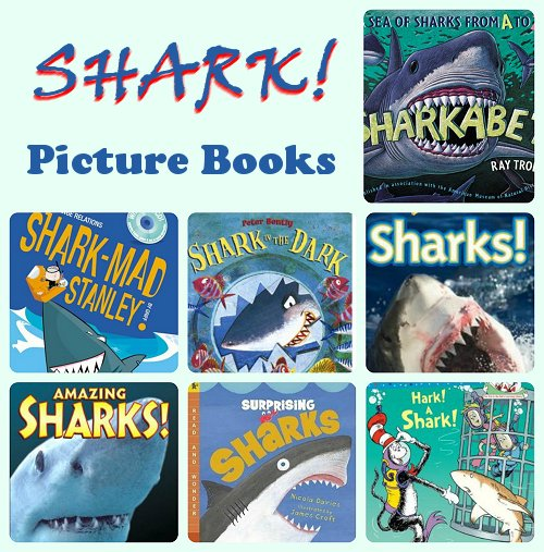 Shark Childrens Picture Books