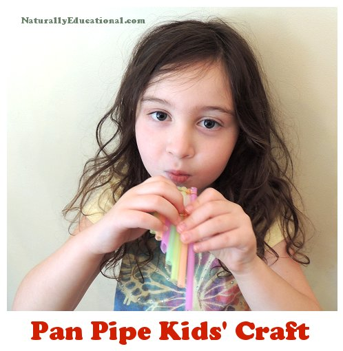 Straw Pan Pipes Craft Playing Tex